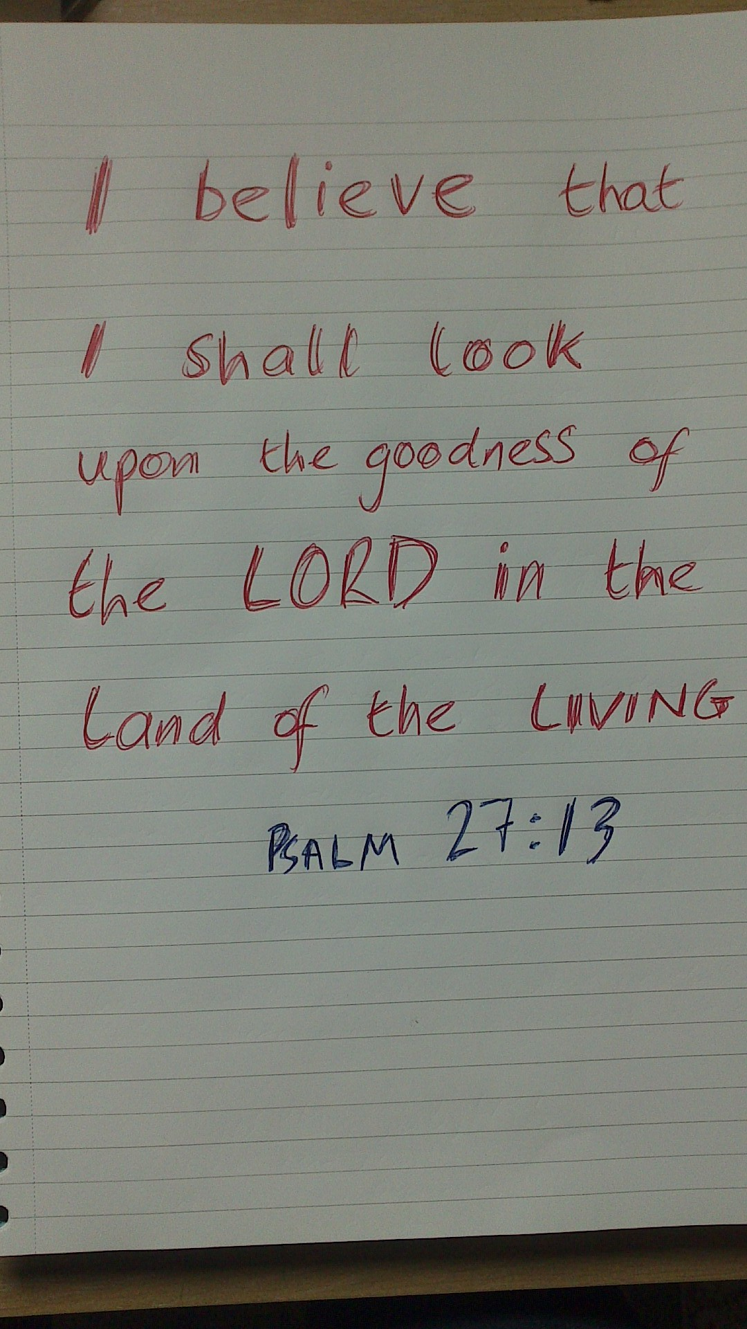 "... the goodness of the LORD in the land of the living!"" Psalm 27:13"